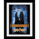 Harry Potter and the Philosophers Stone Dumbledore - Collector Print - 30 x 40cm