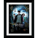 Harry Potter and the Prisoner of Azkaban Harry - Collector Print - 30 x 40cm