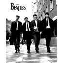 The Beatles In London - Mini Poster - 40 x 50cm
