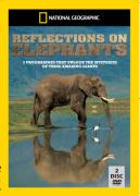 National Geographic: Elephants Collection (Giants of Etosha / Elephants Rage / Reflections on Elephants)