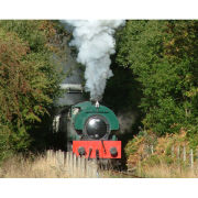 Introductory Steam Train Driving Experience in Yorkshire