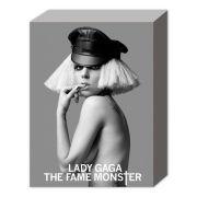 Lady Gaga Free Bitch - 40 x 30cm Canvas