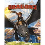 How to Train Your Dragon 2 Rocks Mini Poster (40 x 50cm)