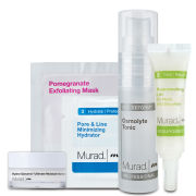 Murad Hydration and Radiance Kit