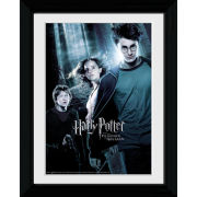 Harry Potter and the Prisoner of Azkaban Forest - Collector Print - 30 x 40cm