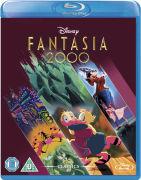 Fantasia 2000: Platinum Editie