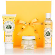 Burt's Bees Baby Bee Essentials Gift Set (Worth £26)