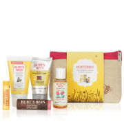 Burt's Bees Daily Indulgence Set (Worth £23.66)