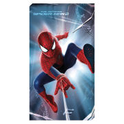 Marvel The Amazing Spider-Man 2 Time - 30x55 Value Canvas