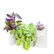 Urbio Happy Family Planter