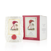 Ted Baker Miami Candle (250g)