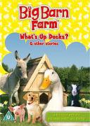 Big Barn Farm: What's Up Ducks?
