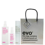 Evo Sleek and Chic Gift Set