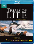Trials of Life