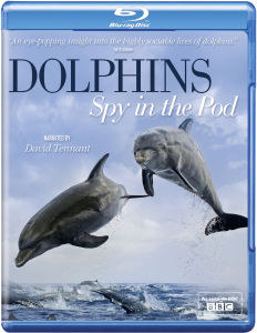 Dolphins Spy in the Pod