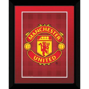 Manchester United Club Crest - 8