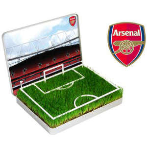 Grow Your Own Arsenal Mini Pitch