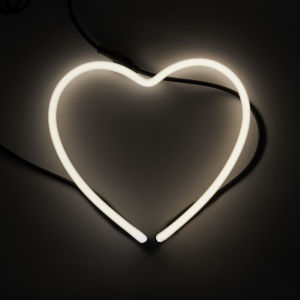 Seletti Heart Neon Light