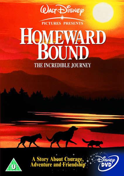 Homeward Bound The Incredible Journey Dvd Zavvi Com