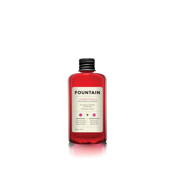 FOUNTAIN The Beauty Molecule (240ml)