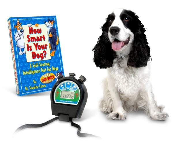 Tests To Determine Your Dog S Intellligence