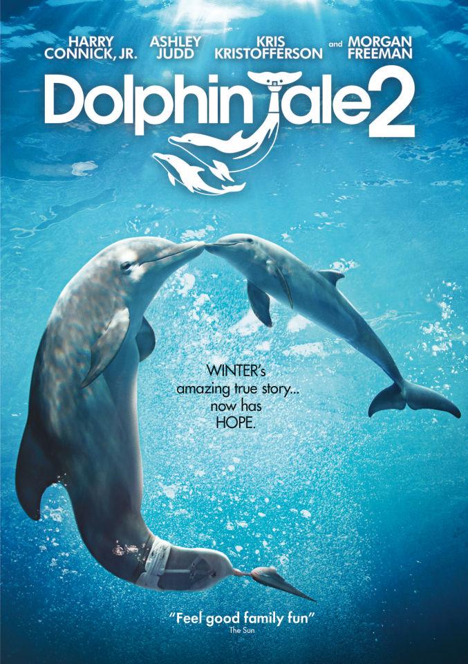 dolphin-tale-2