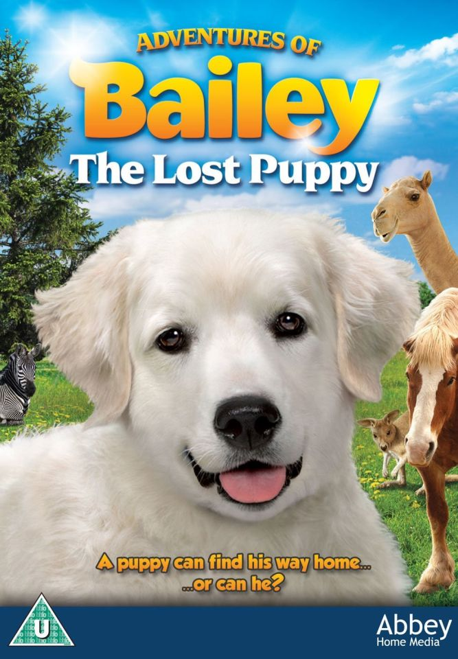 adventures-of-bailey-the-losy-puppy
