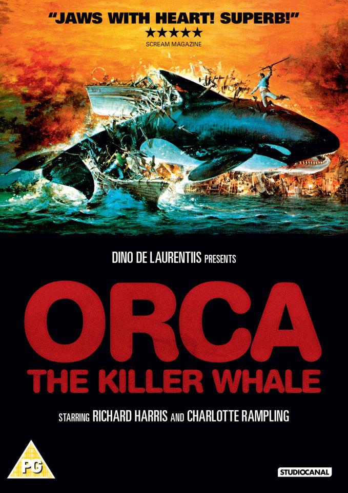 orca-the-killer-whale