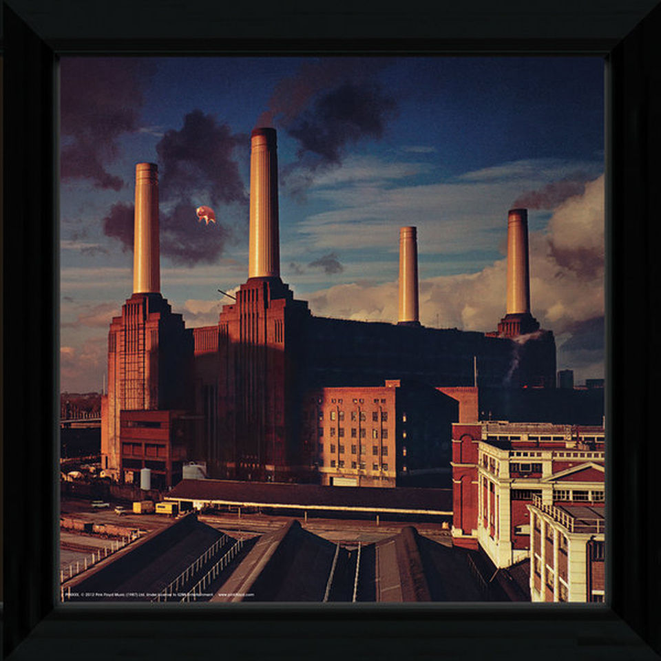 pink-floyd-animals-12-x-12-framed-album-prints