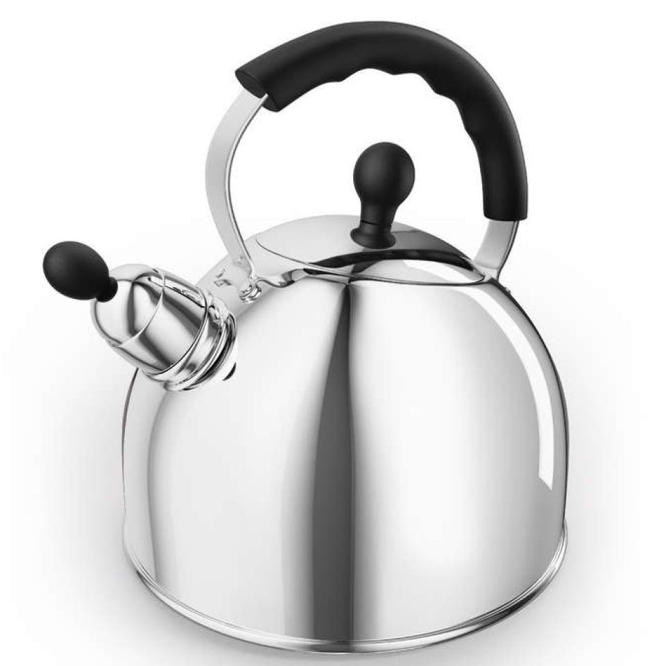morphy-richards-46575-whistling-kettle-stainless-steel-25l