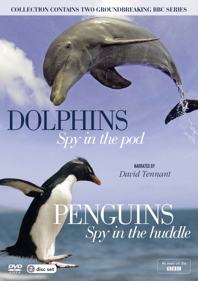 penguins-dolphins-the-spy-collection