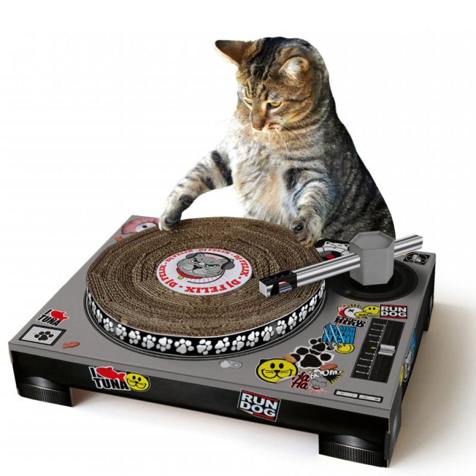 Cat Dj Scratching Deck Australia