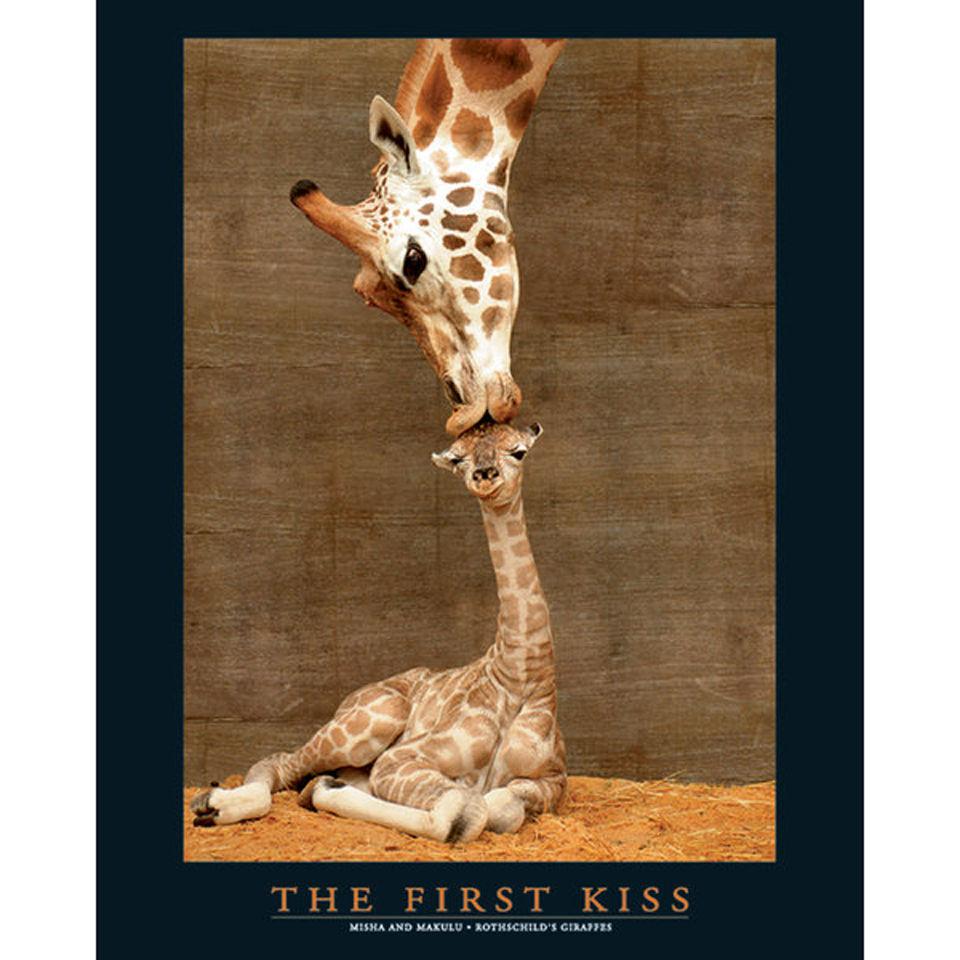 first-kiss-mini-poster-40-x-50cm