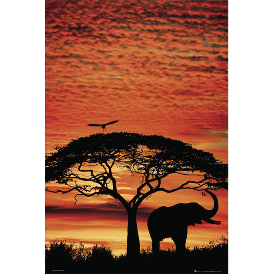 africa-sunset-elephant-maxi-poster-61-x-915cm