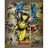 Marvel Comics Wolverine Retro - 16 x 20 Inches Mini Poster: Image 1