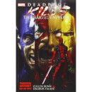 Marvel Deadpool Kills The Marvel Universe Graphic Novel