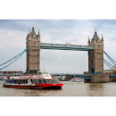 2 for 1 Thames Cruise 3 Day Rover Pass Special Offer