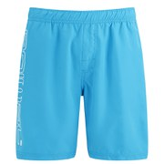 Animal Men's 19 Inch Belos Boardshorts - Hawaiian Blue