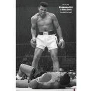 Muhammad Ali V Liston Portrait Corbis - 24 x 36 Inches Maxi Poster