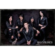Black Veil Brides Group Sit - 24 x 36 Inches Maxi Poster