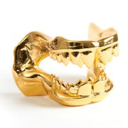 Shark Jaw Bottle Opener - Gold