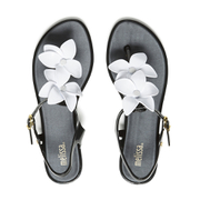 Melissa Women's Solar Hawaii Sandals - Black Contrast