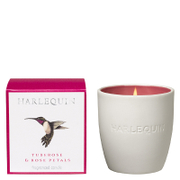Harlequin Amazilia Tuberose and Rose Petals Reed Tumbler Candle