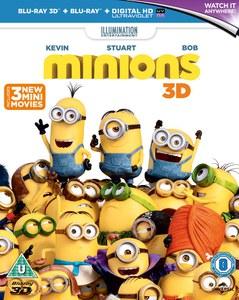 Minions 3D (Includes 2D & Utraviolet Copy)