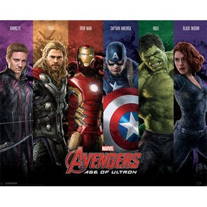 Marvel Avengers Age Of Ultron Team - 16 x 20 Inches Mini Poster
