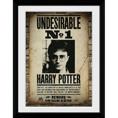 Harry Potter Undesirable No 1 - 30x40 Collector Prints