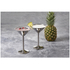 Stainless Steel Martini Glasses (Set of 2 x 250ml): Image 1
