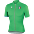 Sportful Italia CL Short Sleeve Jersey - Green: Image 1