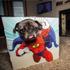 Animal Adventures - Pet Photo Box: Image 1