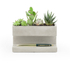 Concrete Desktop Planter and Pen Holder - Large: Image 4